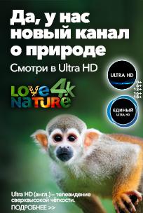 Канал Природа 4K